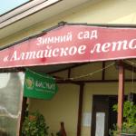 Путешествие с АРГО в Алтайское лето.